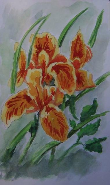 38-lillies