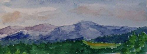 40-meadow-02