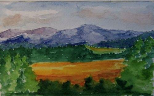 40-meadow
