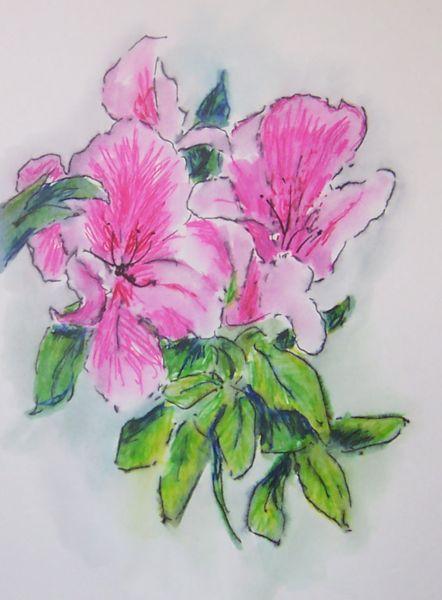 Lillies_1-_3B
