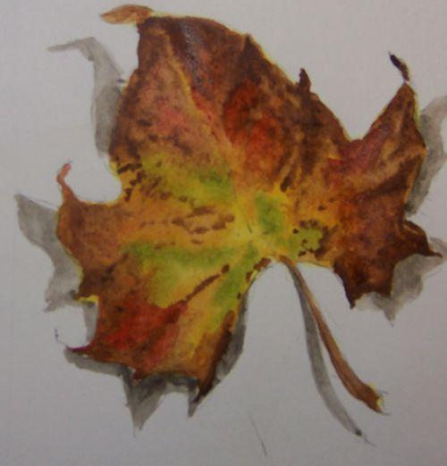 Fall leaf 11-10